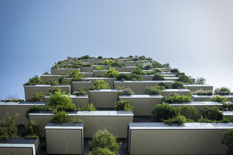 Guide des plantes potagère à choisir pour son balcon