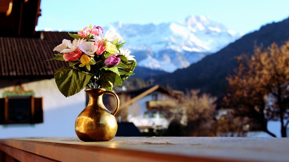 Hivernage : Comment protéger vos plantes en hiver