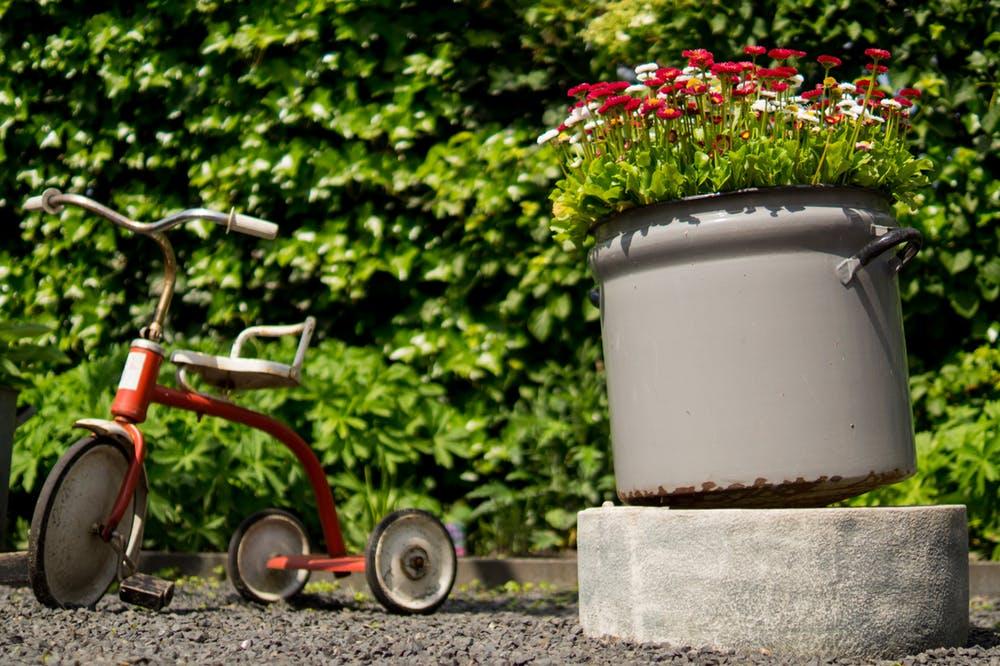 comment eviter moustiques jardin