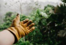 ecologique-jardinier-facile