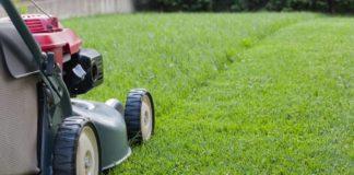 nuisances-sonores-pelouse