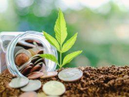 economie jardin d'ornement