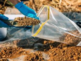 Pourquoi analyser le sol de son jardin