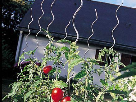 tuteur tomates en spirale