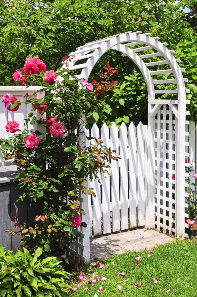 une arche de jardin