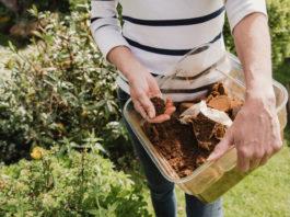 6 astuces pour utiliser le marc de café au jardin ou au potager