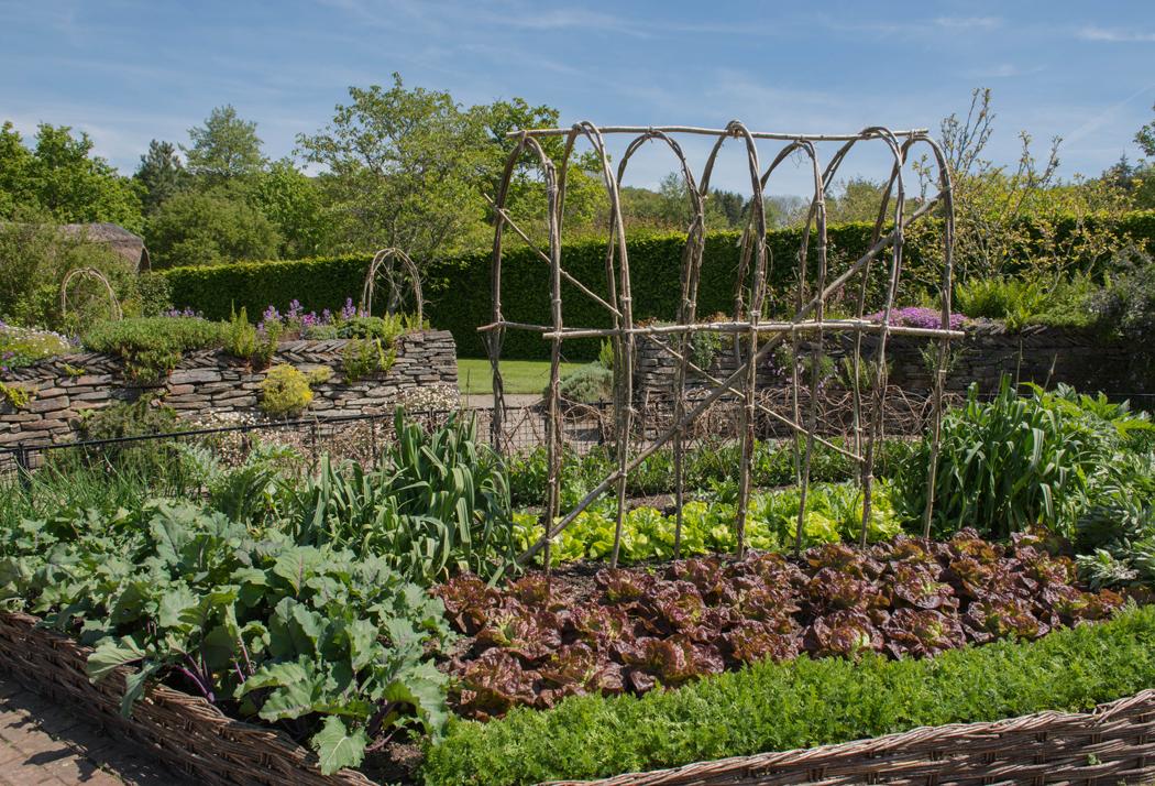 paysagisme d'extérieur tendances jardin